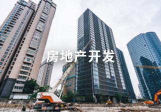 房地產開發