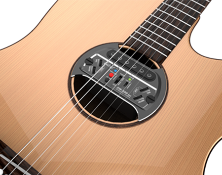 Sound Hole Pickup SW-500