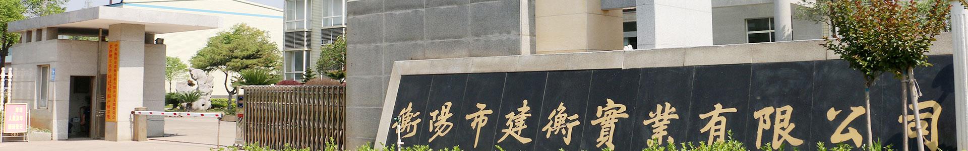 衡阳市西甲视频回放西甲录像有限公司