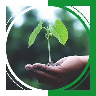千赢网页手机版登入高特农业科技有限公司