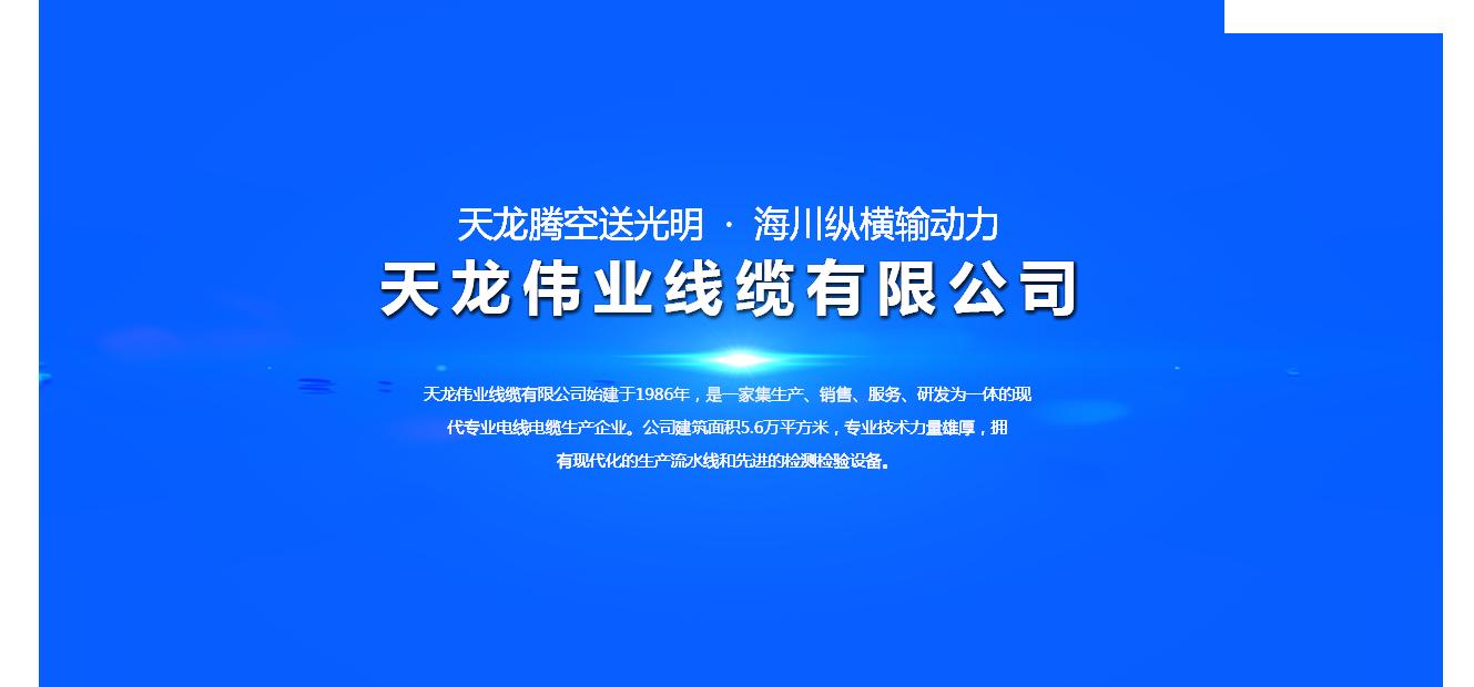 天龙伟业线缆有限公司