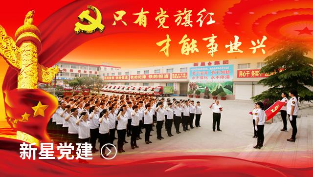 山东新星集团