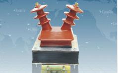 LDZX(F)-6、10型电压互感器