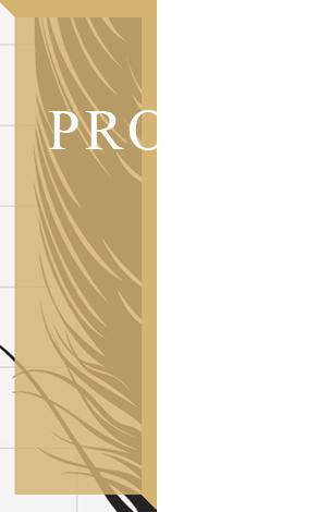 河北奥儒羽绒制品股份有限公司