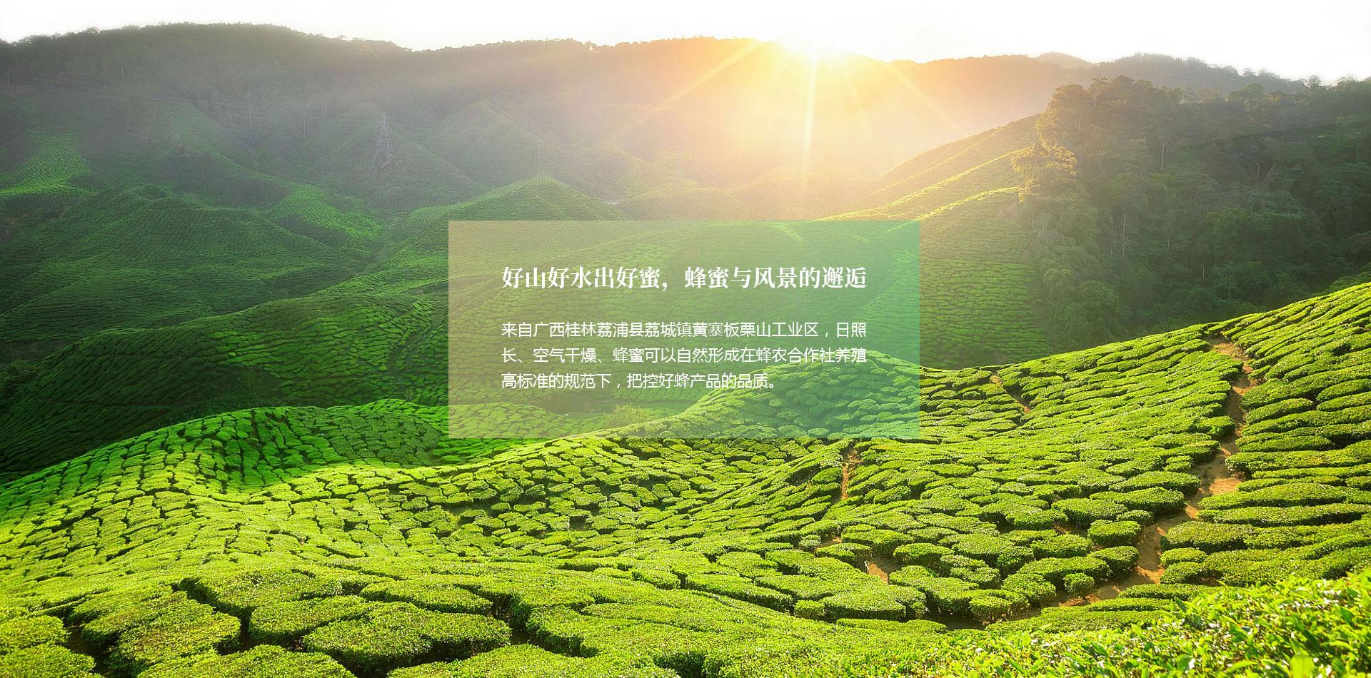 桂林周氏順發食品有限公司