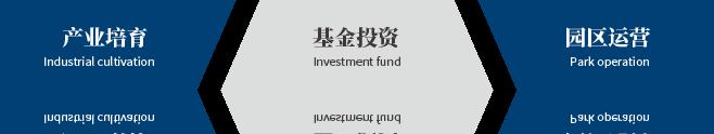 山東國惠投資有限公司