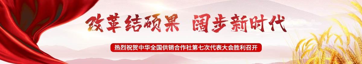 武汉市再生资源集团股份有限公司