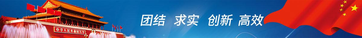 中钢洛耐科技股份有限公司