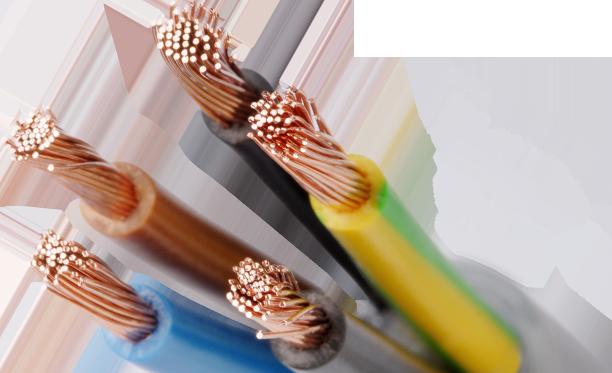 山東免费的黄片線纜有限公司