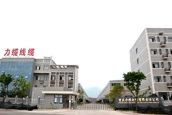 重慶伊人网在线观看電線有限責任公司