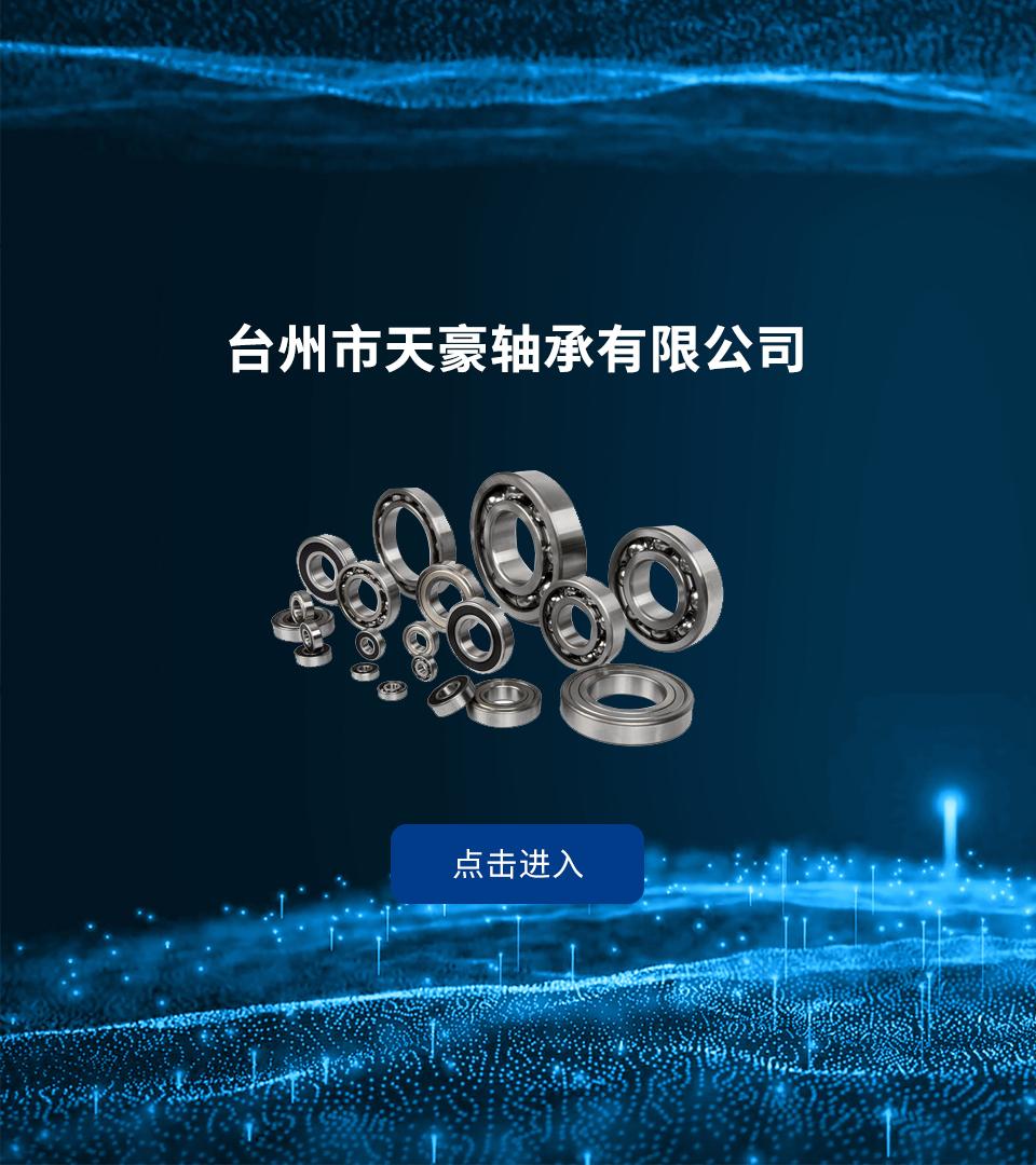 台州市天豪轴承有限公司