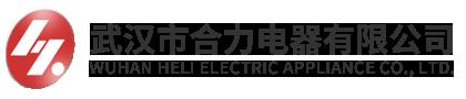 武漢市合力電器有限公司