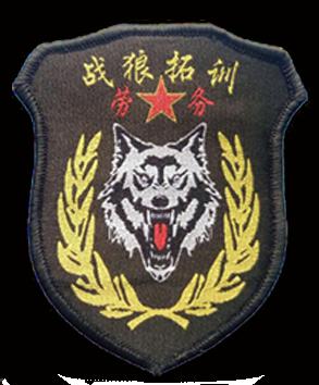 廣西貴港市戰狼勞務有限公司