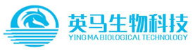 哈尔滨1分快3平台科技有限公司 logo