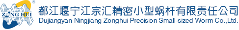 Dujiangyan Ningjiang Zonghui Precision Small-sized Worm Co., Ltd.