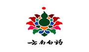 浙江采美新材料股份有限公司