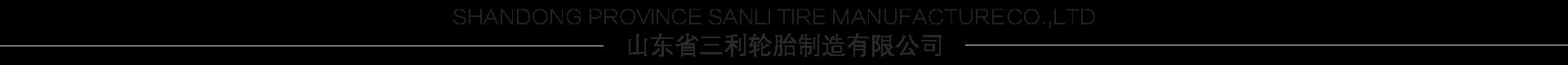 山東省三利輪胎制造有限公司
