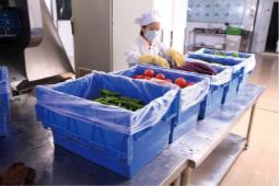 GAP 应 用 于 食 品 安 全
