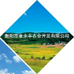 衡陽市金永豐農業開發有限公司