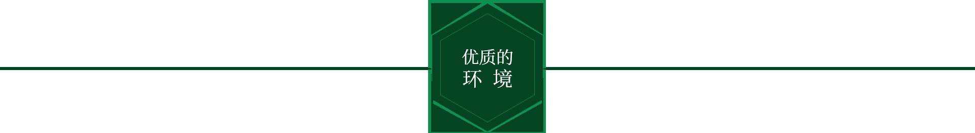 桂林周氏順發食品有限公司優質環境