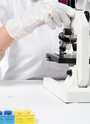 天津太平洋化学制药有限公司