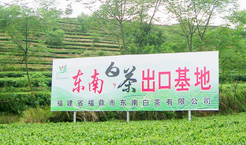 Fuding Dongnan White Tea Co., Ltd