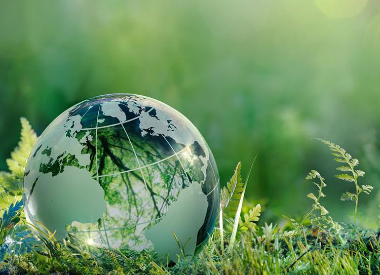 安全與環保