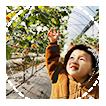 嘉興昌朋園林景觀有限公司