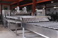 掛面機:掛面機生產掛面過程中對原料的要求