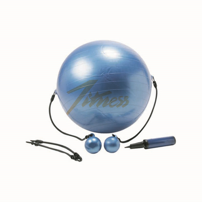 EXERCISE BALL WITH WEIGHTED TONING BALLS