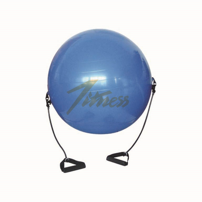 GYM BALL WITH EXPANDER