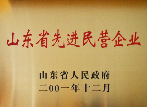 山東省先進民營企業