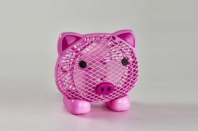 180小猪