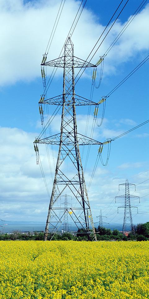 输电、配电用电线电缆