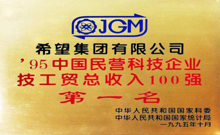 中国民营科技企业技工贸收入百强第一名
