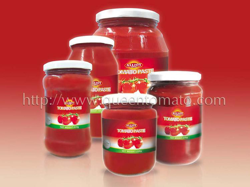 TOMATO  PASTE IN  GLASS  JAR