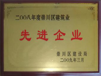 2008年度先進企業