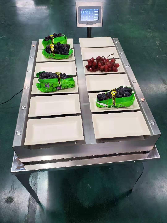 果蔬裝箱電腦配重機(XFWEA-09)