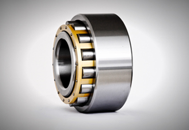 Single-Row cylindrical roller bearings