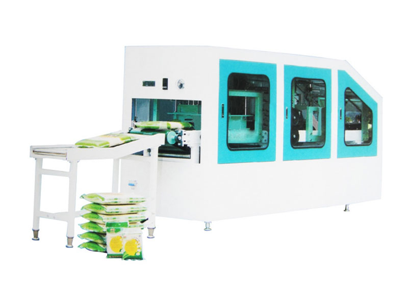 Model DZX High Speed Vacuum Packer