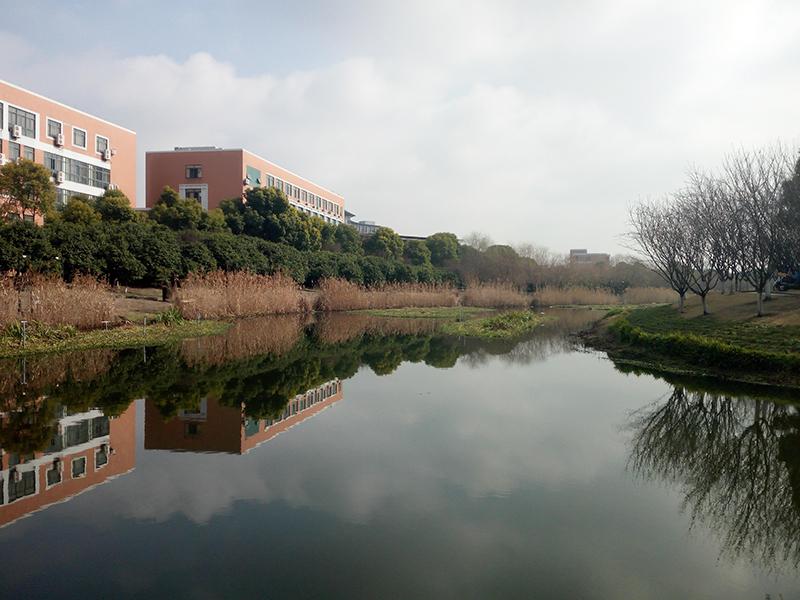 杭州下沙高教东公园水生态治理工程