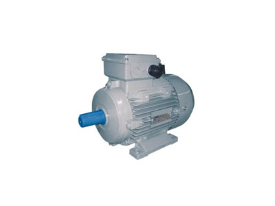 Three-phase Industrial Motor
