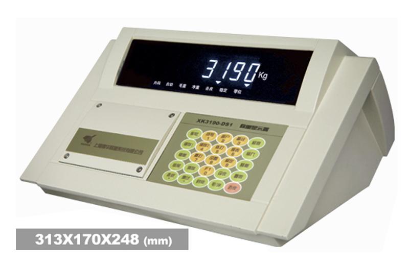 XK3190—DS1