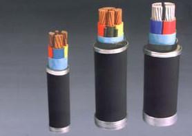 聚氯乙烯绝缘聚氯乙烯护套电力乐动体育官网下载