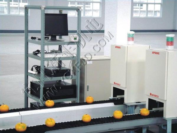 恒新牌XFPEA-06型光電式果蔬分選機