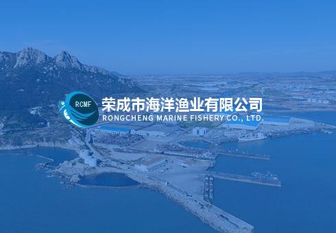 """漁機所""""遠洋漁業捕撈與加工關鍵技術研究""""相關課題通過驗收"""