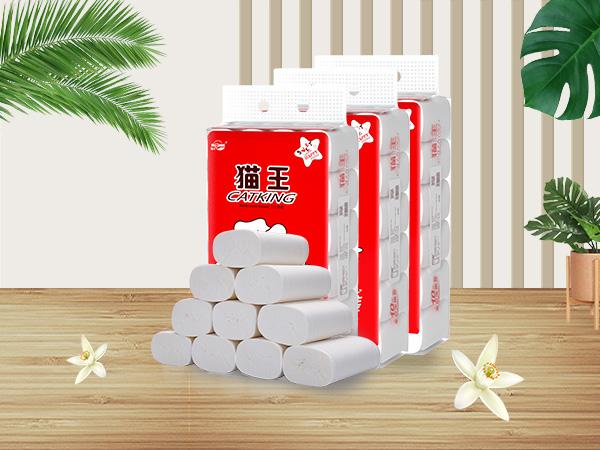 猫王10斤24卷家庭装(MJT01)