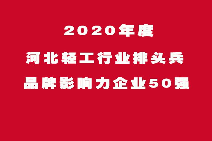河北2020轻工行业排头兵、品牌影响力企业50强发布