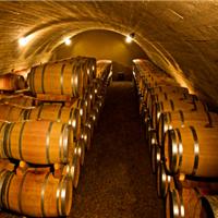 2016年3月,伽玛洁清洗设备在葡萄酒行业的应用