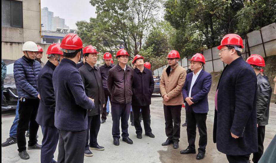 長沙市副市長譚勇一行深入博林金谷項目開展調研